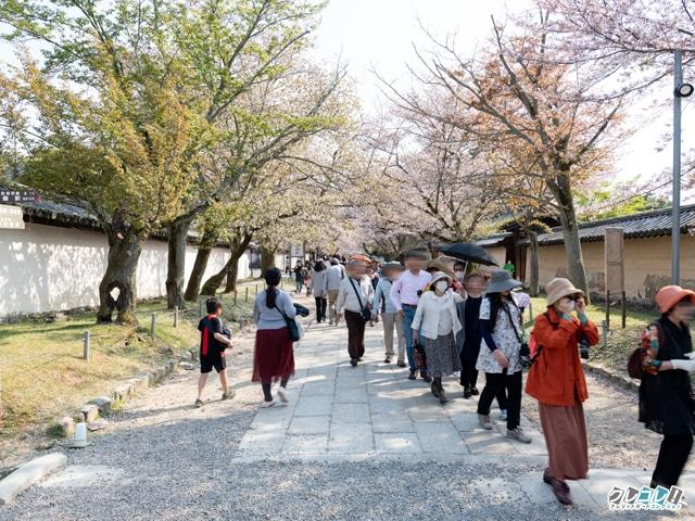 霊峰館への道