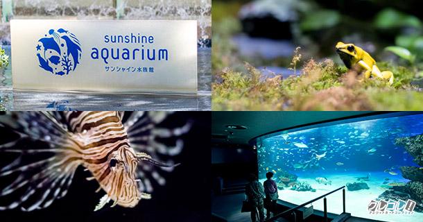 池袋のサンシャイン水族館